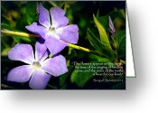 Vinca Flowers Greeting Cards - Spring Vinca Greeting Card by Cindy Wright