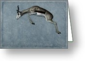 Wildlife Drawings Greeting Cards - Springbok Greeting Card by James W Johnson