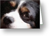 Tired Greeting Cards - Springer Spaniel Greeting Card by Tom Mc Nemar
