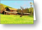 Spring Scenes Greeting Cards - Springtime Barn San Francisco Bay Greeting Card by Gus McCrea
