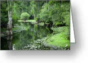 Lettuce Green Greeting Cards - Springtime On The Lake Greeting Card by Carolyn Marshall