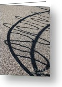 Curved Lines Greeting Cards - Squiggle Shadow Greeting Card by Mandy Shupp