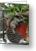 Squirrel Photographs Greeting Cards - Squirrel 77 Greeting Card by Joyce StJames