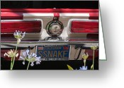 Carroll Shelby Photo Greeting Cards - SSnake Greeting Card by Peggy Zachariou