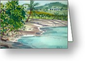 Coconut Greeting Cards - St. Croix Beach Greeting Card by Donald Maier