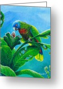 St. Lucia Parrot Greeting Cards - St. Lucia Parrot and bwa pain marron Greeting Card by Christopher Cox