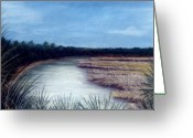 Lakes Pastels Greeting Cards - St. Marks River Greeting Card by Jan Amiss