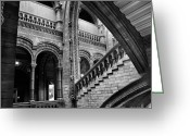 Natural History Greeting Cards - Stairs and Arches Greeting Card by Martin Williams