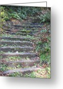 Stair Walk Greeting Cards - Stairway Greeting Card by Tim Allen