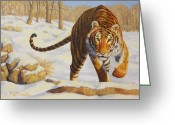 Prowling Greeting Cards - Stalking Siberian Tiger Greeting Card by Crista Forest