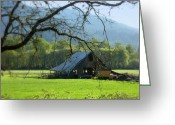 Old Barns Greeting Cards - Standing Still Greeting Card by Cindy Wright