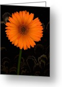 "\""floral Still Life\\\"" Greeting Cards - Standing Tall Greeting Card by Suzanne Gaff"