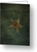 Rural Decay Prints Greeting Cards - Star Greeting Card by Larysa Luciw