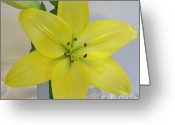 Pure Digital Art Greeting Cards - Star Lily Greeting Card by Marsha Heiken