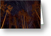 Colorado Photographers Greeting Cards - Star Trails Lit Aspens Greeting Card by Paul Gana