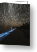 Luminescence Greeting Cards - Star Trails Over Bioluminescence Greeting Card by Philip Hart