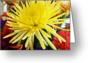 Flowers Pictures Greeting Cards - Starburst Boquoet Greeting Card by Marsha Heiken