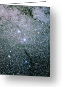 Starfield Greeting Cards - Starfield In The Constellation Of Musca Greeting Card by Luke Dodd