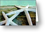 Dark Moss Green Photo Greeting Cards - Starfish Journey Greeting Card by Shirley Sirois