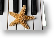 Composing Greeting Cards - Starfish Piano Greeting Card by Garry Gay