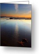 Oregon Photo Greeting Cards - Starfish Sunset Greeting Card by Mike  Dawson