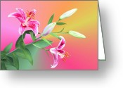 Lilium Greeting Cards - Stargazer Lilies Greeting Card by Kristin Elmquist