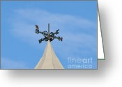 Indicator Greeting Cards - Staring Southward Greeting Card by Al Powell Photography USA