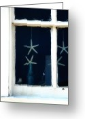 Sea Shell Art Greeting Cards - Stars Hung In Glass Greeting Card by JAMART Photography