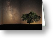 Grasslands Greeting Cards - Stars Shine Brightly Greeting Card by Jim Richardson