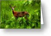 White Tailed Deer Greeting Cards - Startled Greeting Card by Lois Bryan