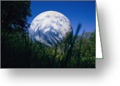 Germantown Photo Greeting Cards - Startling view of a Greeting Card by National Geographic