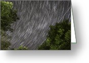 Startrail Greeting Cards - Startrails above tree Greeting Card by Cristian Mihaila