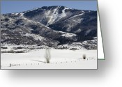 "\""colorado Resort\\\"" Greeting Cards - Steamboat - Colorado Greeting Card by Brendan Reals"