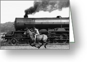 Carlisle Greeting Cards - Steamy Steed Greeting Card by Fox Photos