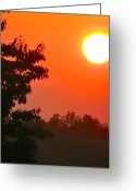 Shining Sun Kiss Mountains Greeting Cards - Steamy Sunset Greeting Card by Debra     Vatalaro