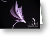 Magnolia Mixed Media Greeting Cards - Steel Magnolia Abstract. Greeting Card by H G Mielke