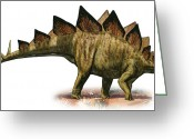 Stegosaurus Digital Art Greeting Cards - Stegosaurus Armatus, A Prehistoric Era Greeting Card by Sergey Krasovskiy
