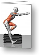 Muscle Photo Greeting Cards - Step-down Exercises Greeting Card by MedicalRF.com