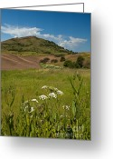 Wheatfields Photo Greeting Cards - Steptoe Butte Greeting Card by Reflective Moments  Photography and Digital Art Images