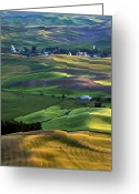 Crops Greeting Cards - Steptoe Shadows Greeting Card by Mike  Dawson