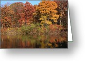 Lyle Hatch Greeting Cards - Sterling Pond Greeting Card by Lyle Hatch