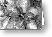Sterling Silver Greeting Cards - Sterling Shimmer Greeting Card by DigiArt Diaries by Vicky Browning
