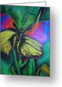 Juliana Dube Drawings Greeting Cards - Still Butterfly Greeting Card by Juliana Dube
