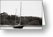 Bonnes Eyes Fine Art Photography Greeting Cards - Still in The Water Greeting Card by Bonnes Eyes Fine Art Photography