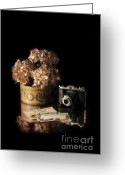 Flower Blossom Greeting Cards - Still Life with Hydrangea and Camera Greeting Card by Jill Battaglia