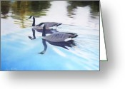 Lakes Pastels Greeting Cards - Still Motion Greeting Card by David Vincenzi