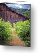 Old Wooden Fence Greeting Cards - Still standing Greeting Card by Joan Carroll