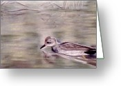 Lakes Pastels Greeting Cards - Still Water Greeting Card by Jan Amiss