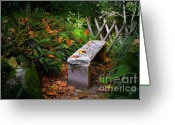 Moisture Greeting Cards - Stone Bench Greeting Card by Carlos Caetano