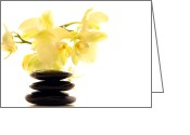 Flowers Photo Greeting Cards - Stones and Orchid Greeting Card by Olivier Le Queinec